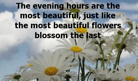 The Best And Most Unique Good Evening Images Collection