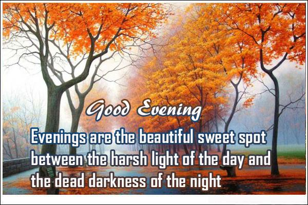 Good Evening Quotes Evenings Are The Beautiful Wallpaper And