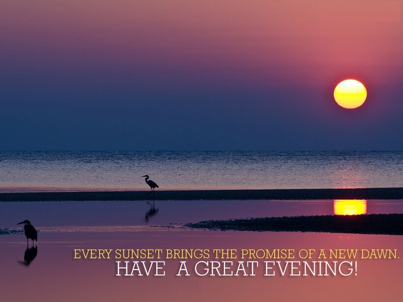Create a great evening