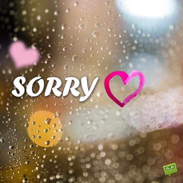 The Most Unique And Beautiful Collection Of Sorry Images On The