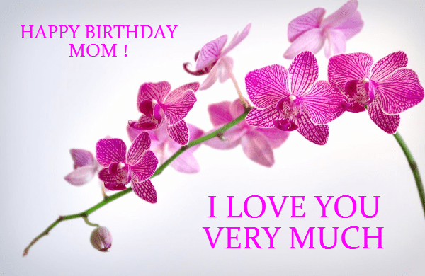 Happy Birthday to you Mom!