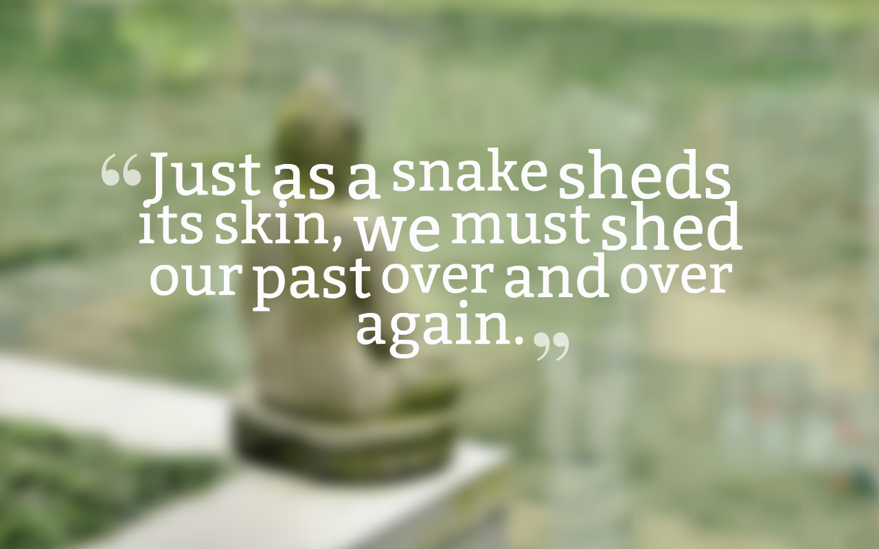 50+ Most Meaningful Moving On Quotes and Move On Quotes